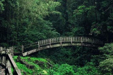 Carinas Weltreise: Der vierte Monat